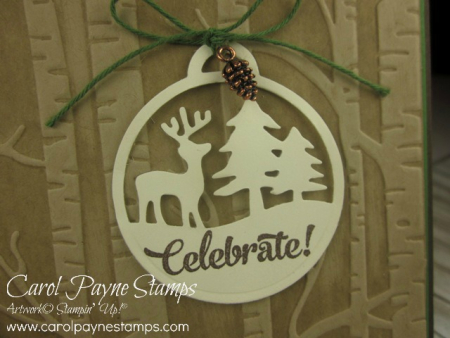 Stampin_up_shake_&_celebrate_carolpaynestamps3