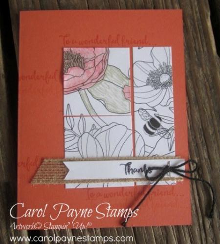 Stampin_up_inside_the_lines_dragonfly_carolpaynestamps4