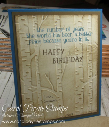 Stampin_up_bear_hugs_carolpaynestamps5