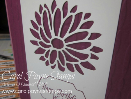 Stampin_up_special_reason_carolpaynestamps2