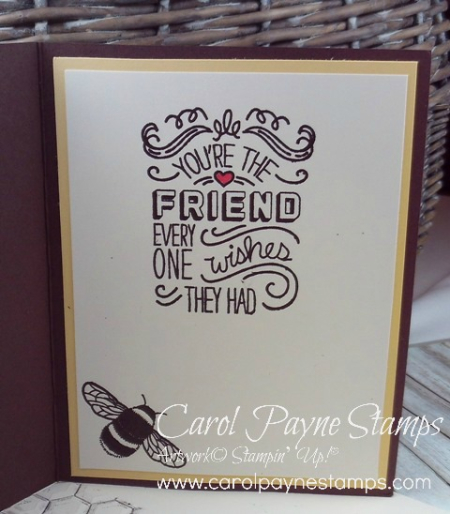 Stampin_up_hexagon_dragonfly_dreams_carolpaynestamps4