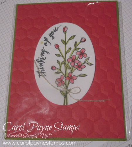 Stampin_up_wild_about_flowers_feather_together_carolpaynestamps1