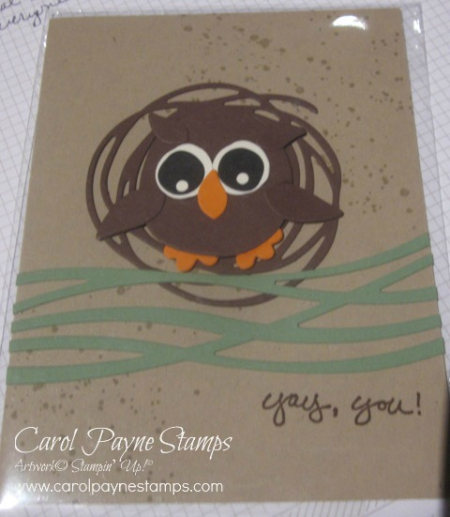 Stampin_up_swirly_scribbles_carolpaynestamps1