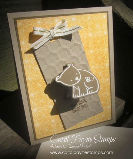 Stampin_up_a_little_wild_carolpaynestamps8