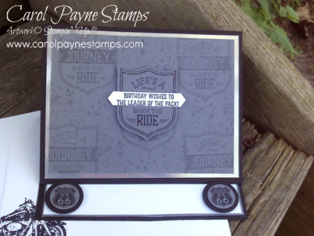 Stampin_up_one_wild_ride_carolpaynestamps7