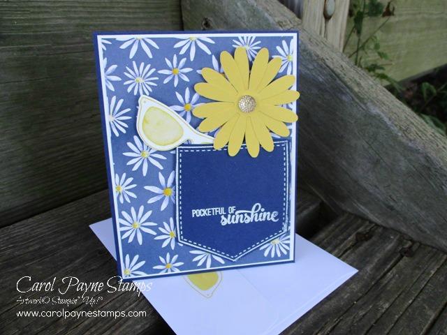 Stampingroxmyfuzzybluesox stampin up pocketful of daisies stampinuppocketfulofsunshinecarolpaynestamps4 m4hsunfo