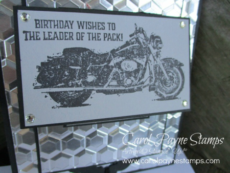 Stampin_up_one_wild_ride_carolpaynestamps2