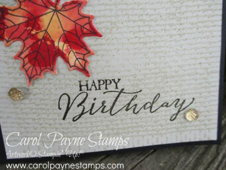Stampin_up_colorful_seasons_polished_stone_carolpaynestamps5