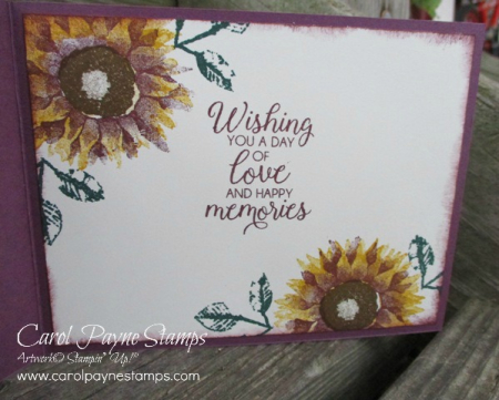 Stampin_up_painted_harvest_carolpaynestamps4