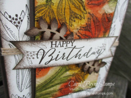 Stampin_up_count_my_blessings_carolpaynestamps3
