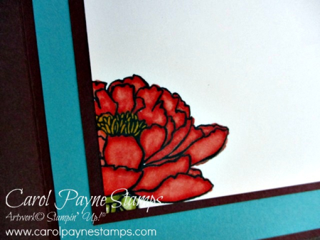 Stampin_up_youve_got_this_carolpaynestamps6