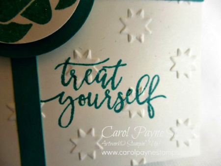 Stampin_up_picture_perfect_birthday_carolpaynestamps4
