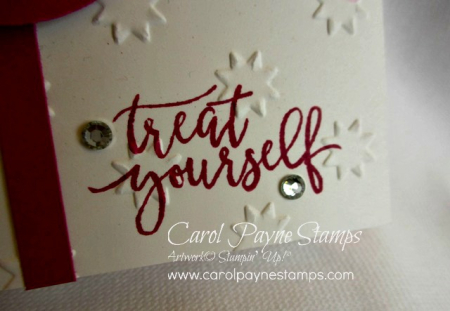 Stampin_up_picture_perfect_birthday_carolpaynestamps8