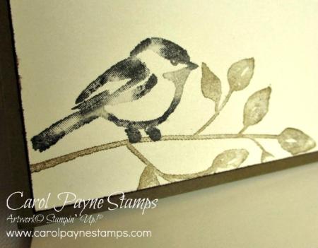 Stampin_up_petal_palette_christmas_carolpaynestamps5