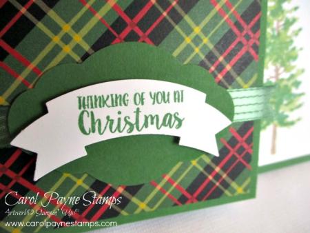 Stampin_up_season_like_christmas_carolpaynestamps2