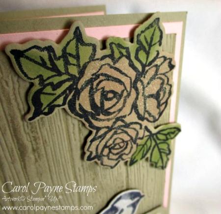 Stampin_up_petal_palette_carolpaynestamps3