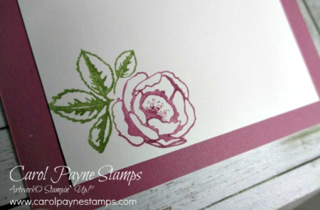 Stampin_up_happy_wishes_carolpaynestamps7