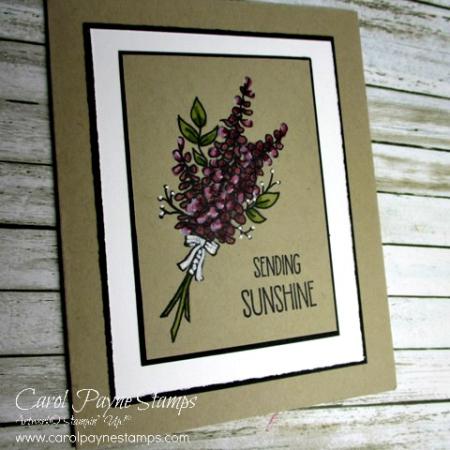 Stampin_up_lots_of_lavender_carolpaynestamps1