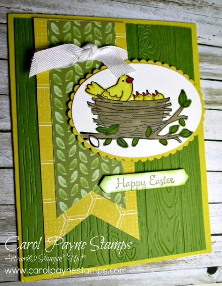 Stampin_up_flying_home_carolpaynestamps2