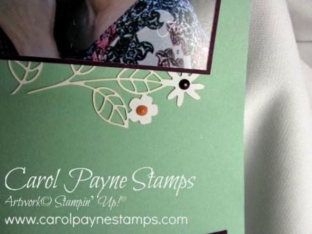 Stampin_up_memories_and_more_carolpaynestamps5