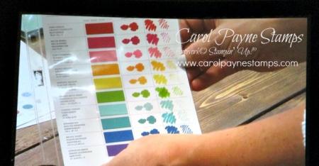 Stampin_up_color_revamp_carolpaynestamps1