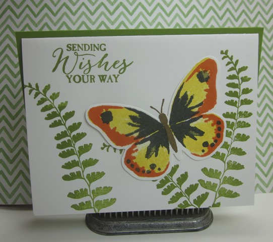 Stampin_up_watercolor_wings