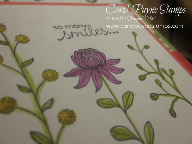 Stampin_up_flowering_fields_2 - Copy