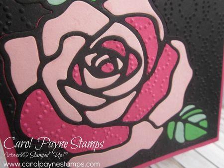 Stampin_up_carolpaynestamps_rose_wonder_2 - Copy