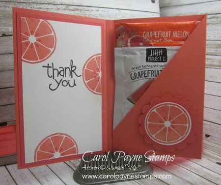 Stampin_up_apple_of_my_eye_carolpaynestamps_2 - Copy