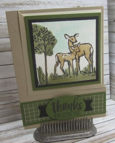 Stampin_up_in_the_meadow1