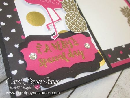 Stampin_up_pop_of_paradise_carolpaynestamps2 - Copy