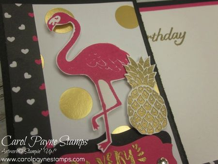 Stampin_up_pop_of_paradise_carolpaynestamps3 - Copy