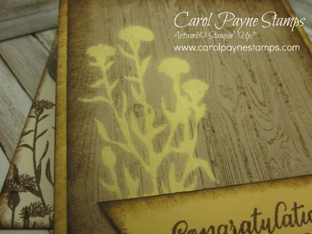 Stampin_up_wild_about_flowers_carolpaynestamps3 - Copy