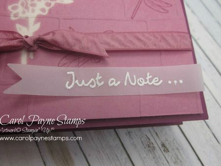 Stampin_up_touches_of_texture_carolpaynestamps3 - Copy