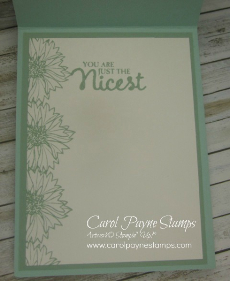 Stampin_up_touches_of_texture_bleach_carolpaynestamps2 - Copy