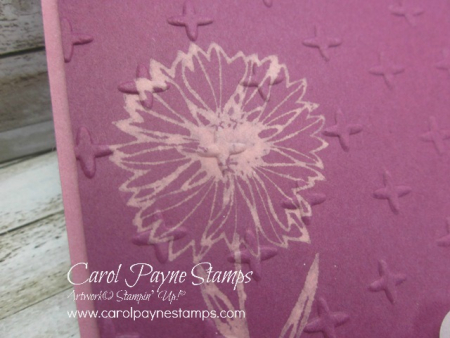 Stampin_up_touches_of_texture_bleach_carolpaynestamps6 - Copy