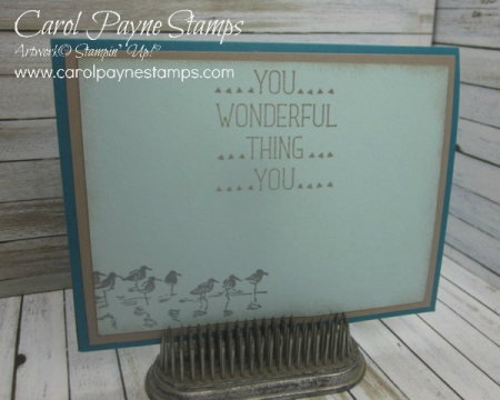 Stampin_up_wetlands_carolpaynestamps7 - Copy