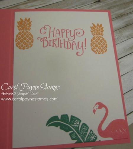 Stampin_up_pop_of_paradise_triple_time_carolpaynestamps4 - Copy