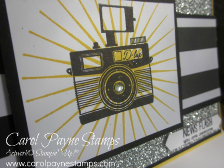 Stampin_up_pun_intended_camera_carolpaynestamps5