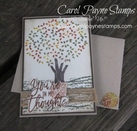 Stampin_up_thoughtful_branches_carolpaynestamps2 - Copy