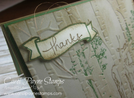 Stampin_up_in_the_meadow_carolpaynestamps2