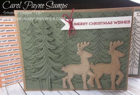 Stampin_up_santa's_sleigh_carolpaynestamps1