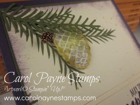Stampin_up_christmas_pines_carolpaynestamps3