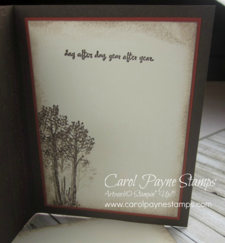 Stampin_up_in_the_meadow_carolpaynestamps6