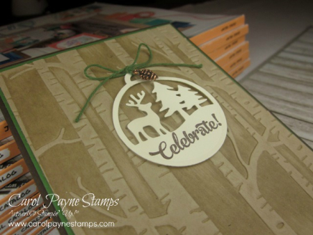 Stampin_up_shake_&_celebrate_carolpaynestamps2
