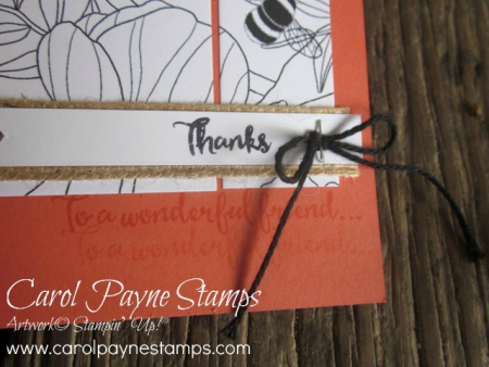 Stampin_up_inside_the_lines_dragonfly_carolpaynestamps6