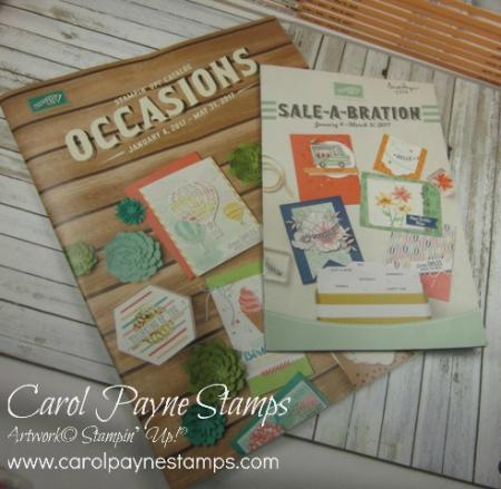 Stampin_up_occasions_sab_2017_carolpaynestamps - Copy
