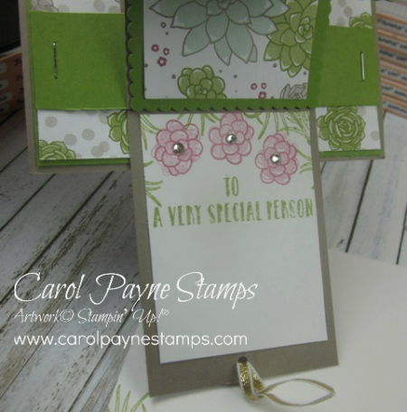 Stampin_up_oh_so_succulent_waterfall_carolpaynestamps4