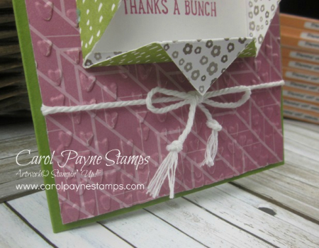 Stampin_up_basket_bunch_folded_paper_frame_carolpaynestamps3