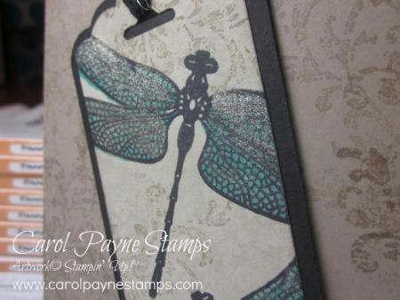 Stampin_up_dragonfly_dreams_carolpaynestamps2